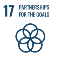 UN - Partnerships for the goals